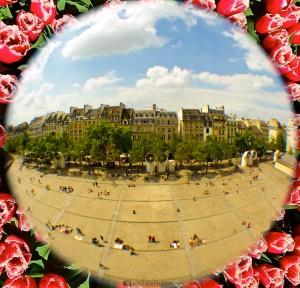 pompidou, Paris, fisheye, rose
